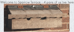 Multiple sparrow nestbox - Click for more information including full constructional details